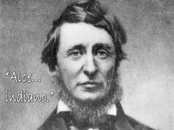 Thoreau-frase