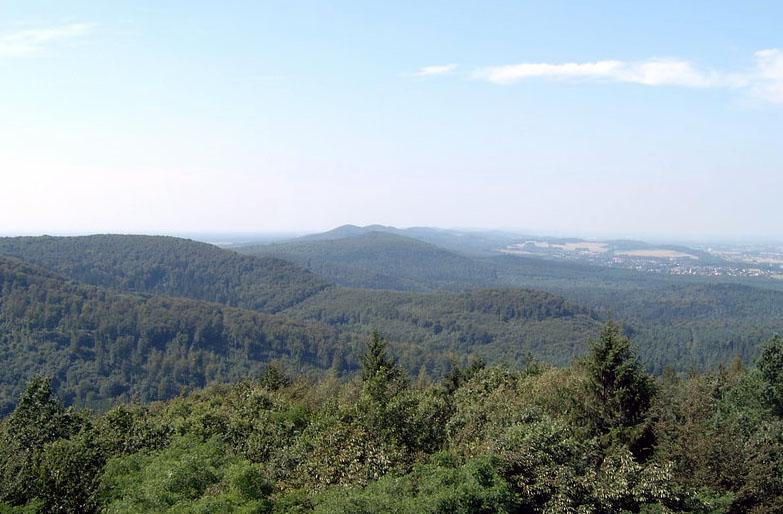 Blick-über-den-Teutoburger-Wald1