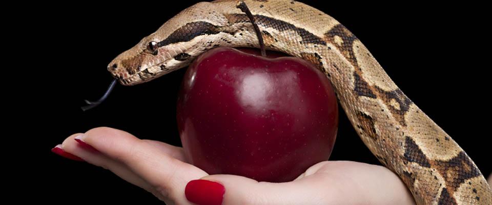 maçã-tentação-destaque