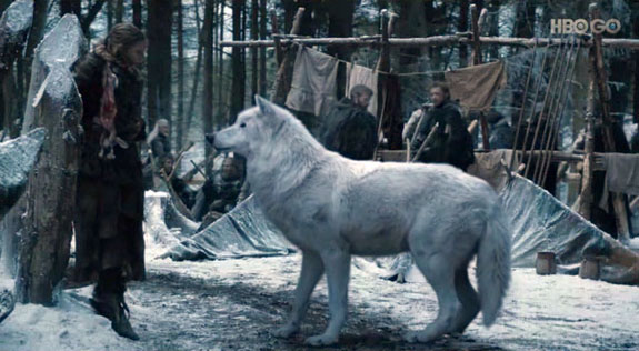 dire-wolf-game-of-thrones2